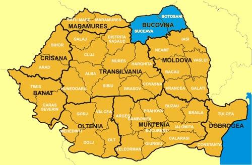 Premierul De Acord Cu Organizarea Regiunii Bucovina Viva Fm