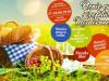 4p3-picnic-festival-1024x768