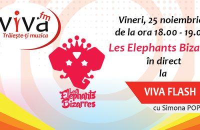 les-elephants